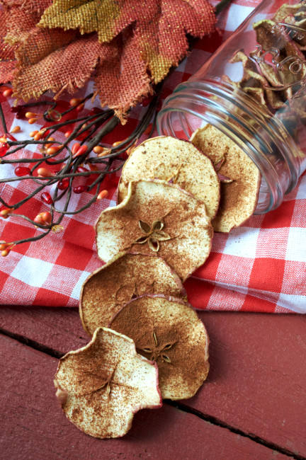 Apple Pie Spiced Apple Chips | Plaid and Paleo