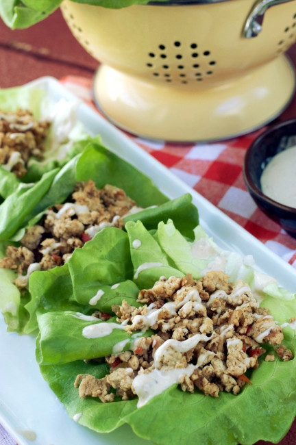 Paleo Spicy Chicken Lettuce Wraps | Plaid and Paleo